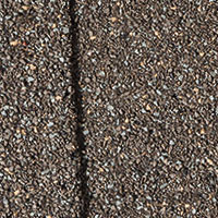 Asphalt Shingle Fossil Wood